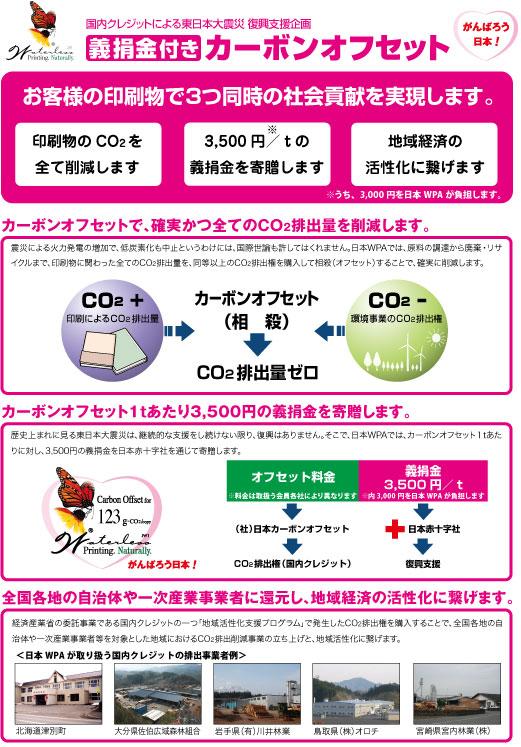 110530COD-flyer.jpg