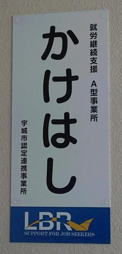 一般社団法人日本wpa 日本wpaの活動 就労継続支援A型事業所